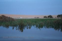 Source d'eau chaude au milieu du sable d'or