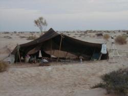 Votre tente bedouine pour les nuits dans le désert