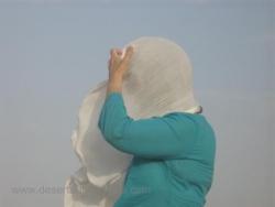 La caresse du vent