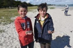 des crabes !!! (morts...)