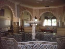 Fontaine centrale du salon...