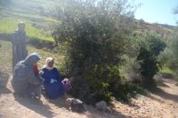 Route d'AGADIR & ses spectateurs...