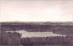 walden-fm-pine-hill-hg_480.3