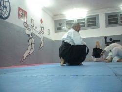 coura aikido avec si ezzedine 2009