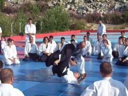 Stage aikido a bursa uludag