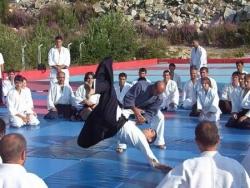 Stage aikido a uludag/bursa