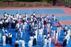 uludag aikido summer camp 2009