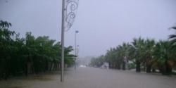 Avenue des jockeys à Palavas
