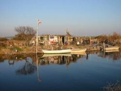 CABANE - Janvier 2002