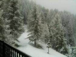 un réveil sous la neige...