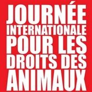 journée du droit des animaux 2014