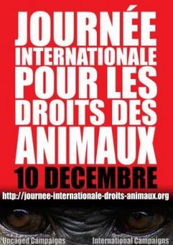 journée pour le droit des animaux 2010