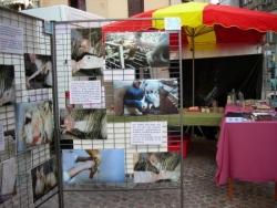 Stop gavage à Limoges