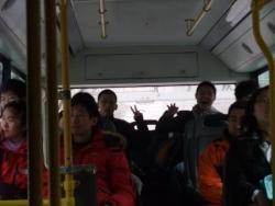 Bus 113