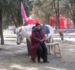 Tour de poney ?