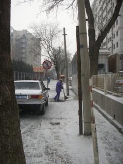 Snow. Neige