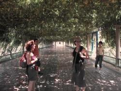 Vacances Vallée des raisins