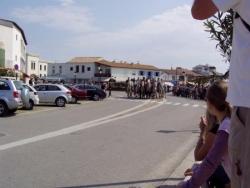 L'arrivée des taureaux aux Sainte-Maries-de-la-Mer