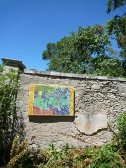 Les iris de Van Gogh à St Paul le mausolée