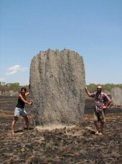 De Darwin à Nhulumby