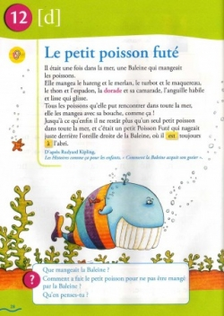 Bordas suite