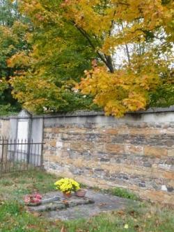 Humbles parmi les feuilles d'automne