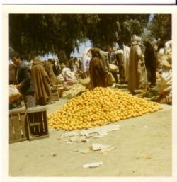 025-oranges.3