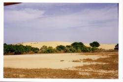 36-le_desert.3