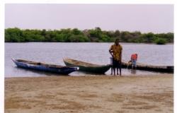 48-au_loin_la_mangrove.3