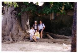 52-arbre_a_palabres.3