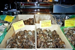 Banc d'huîtres