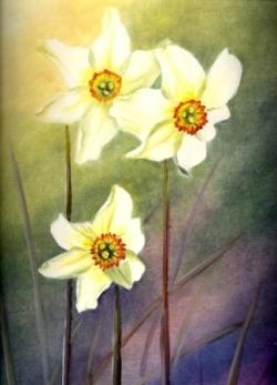 Narcisses - Huile sur papier - 39x28