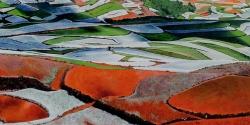 Terres rouges 01 - Technique mixte - 40x80