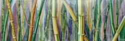 Bambous d'Anduze - Technique mixte - 150x50