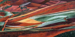 Terres rouges 02 - Technique mixte - 40x80
