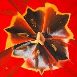 Tulipe - Huile - 50x50