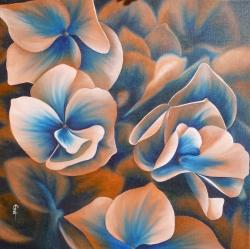 Hortensia - Huile - 50x50