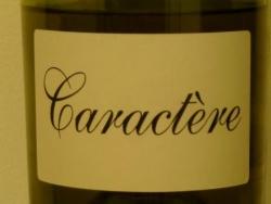 CARACTERES 2005 COTES DE JURA DE GANEVAT