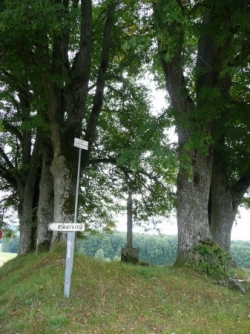 La Croix Pierron à Tignécourt (Vosges)