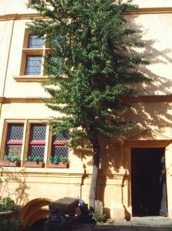Hôtel de Ligniville à Châtillon-sur-Saône
