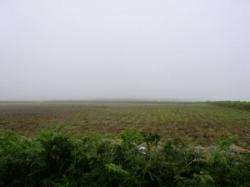 La ferme a disparue