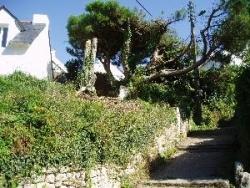 île aux moines. Ruelle et chemins