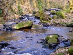 Canal des moines d'Aubazine