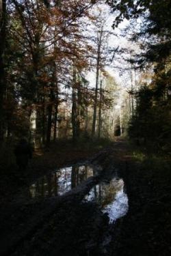 2009-10-637a.jpg