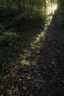 2009-10-680a.jpg