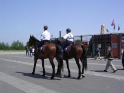 Les cavaliers sont aussi à l'extérieur !