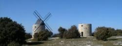 """Aux environs du """"Piton des Maurras""""...."""