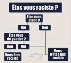 Etes-vous raciste ?