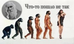 Evolution ! Mieux vaut en rire...