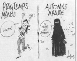 Printemps arabes ?......